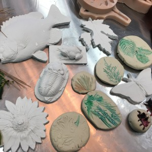 Nature Impressions on Air-Dry Clay